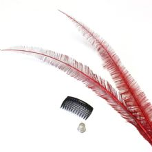 Long Cut Sweet Red Ostrich Feather